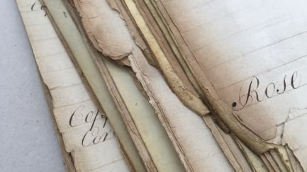 Paper Repair and Conservation in London and the South East