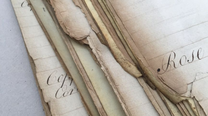 Paper Repair and Conservation